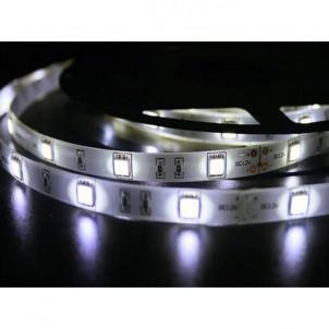 Светодиодная лента 5050/30 холодный белый IP65 Premium